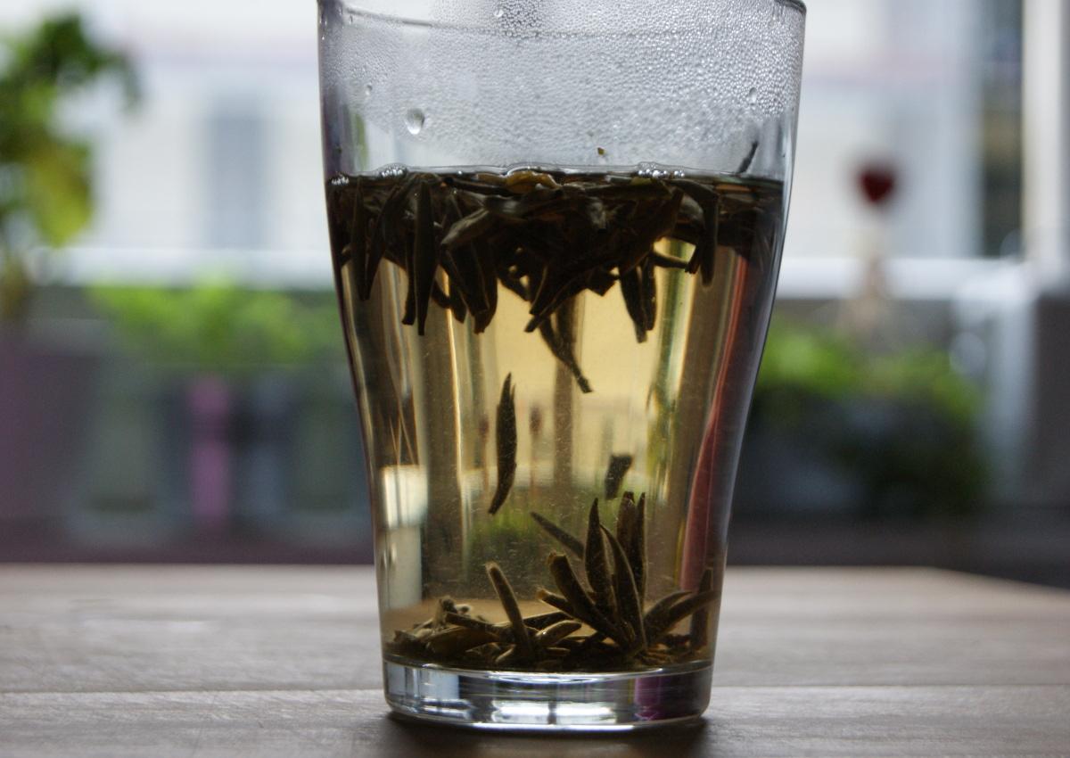 Schön zu sehen die kleinen Haare des Silbernadel-Tees
